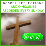 Gospel Reflections ~  Palm Sunday (2016)