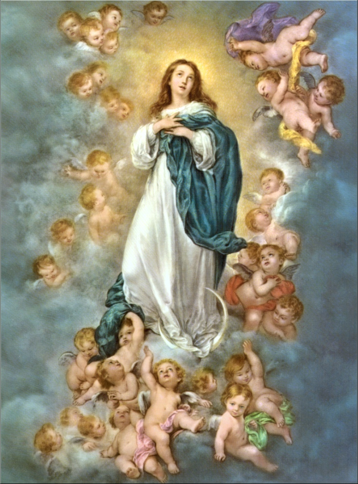 The Assumption Of Mary Young Catholic Mums Young